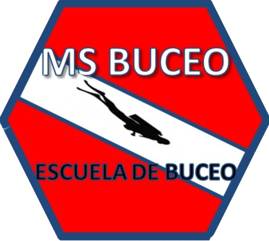 MS BUCEO